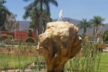 Tule Tree, Santa Maria del Tule, Mexico