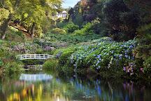 Trebah Garden, Falmouth, United Kingdom