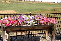 Buffalo Run Golf Course, Commerce City, United States