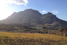 Camino Wine Tours, Stellenbosch, South Africa