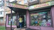 Дракоша, улица Багратиона на фото Калининграда