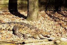 Busch Wildlife Sanctuary, Jupiter, United States