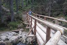 Rusinowa Polana, Tatra National Park, Poland