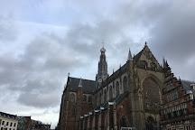 De Vishal, Haarlem, The Netherlands