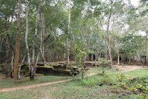 Ta Nei Temple, Siem Reap, Cambodia