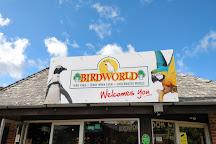 Birdworld, Farnham, United Kingdom