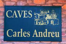 Celler Carles Andreu, Pira, Spain