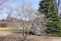 Iowa Arboretum, Madrid, United States