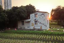 Mapopo Community Farm, Hong Kong, China