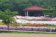 Tachiarai Park, Tachiarai-machi, Japan