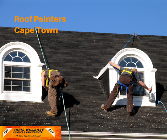roof painters southern suburbs, cape town