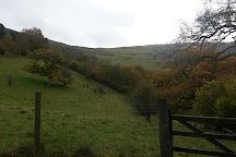 Gilfach Nature Reserve, Rhayader, United Kingdom