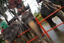Bang Pae Safari, Phuket Town, Thailand