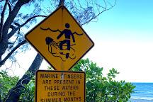 Myall Beach, Cape Tribulation, Australia