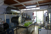 Liquorificio Mansi Carlo, Minori, Italy