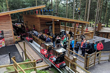 Zip World Fforest, Betws-y-Coed, United Kingdom