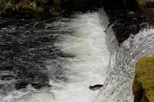 Bear Creek Weir, Seward, United States