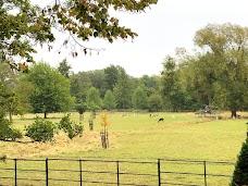 The Grove oxford