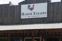 Hahne Estates Winery, Johnson City, United States