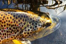 Smoky Mountain Angler, Gatlinburg, United States