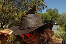 Red Desert Reptiles, Yulara, Australia
