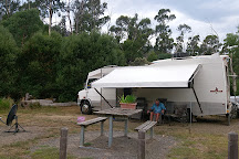 Murrindindi Scenic Reserve, Yea, Australia