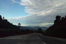 Kamojang Crater, Garut, Indonesia