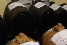 Museum of Traditional Balsamic Vinegar of Modena - Spilamberto, Spilamberto, Italy