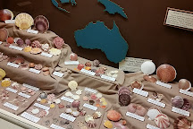 Brazosport Museum of Natural Science, Clute, United States