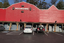 Tennessee Shine Company, Pigeon Forge, United States