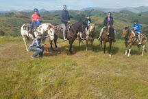 Vino Vaqueros Horseback Riding, Santa Ynez, United States