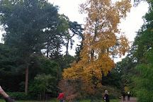 Westonbirt Arboretum, Tetbury, United Kingdom