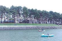 Goryokaku Park, Hakodate, Japan
