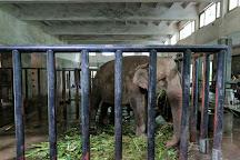 Hangzhou Zoo, Hangzhou, China