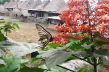 Bena Traditional Village, Bajawa, Indonesia