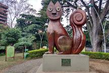 El Gato Del Rio( Gato De Tejada), Cali, Colombia