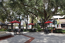 Hyde Park, Tampa, United States