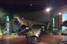 Museo de Ciencias, Bahia Blanca, Argentina