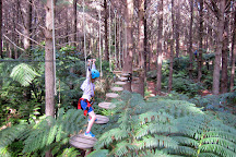 Adventure Forest, Whangarei, New Zealand