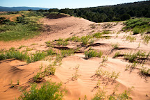 Coral Pink Sand Dunes State Park, Kanab, United States