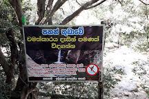 Pahanthudawa Waterfall, Belihuloya, Sri Lanka