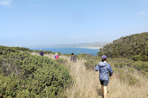 Point Reyes Outdoors, Point Reyes Station, United States
