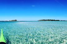 Happy Paddler Kayak Tours & EcoVentures, Anna Maria Island, United States
