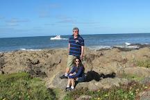 Playa de Los Ingleses, Punta del Este, Uruguay