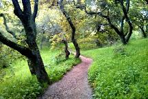 Helen Putnam Park, Petaluma, United States