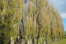 Abbey Meadows, Abingdon, United Kingdom