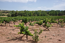 Castlexperience - Wine Tours, Barcelona, Spain