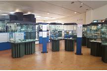 Museo Archeologico Nazionale di Metaponto, Metaponto, Italy