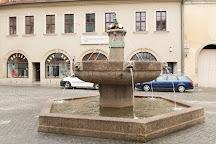 Eselsbrunnen, Halle (Saale), Germany