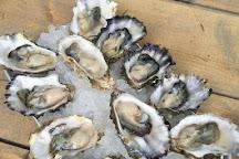 Nevor Shellfish Farm, Tillamook, United States
